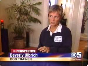 Pooch Coach - Beverly Ulbrich KRON4 dog aggression Interview (Aug 2005)