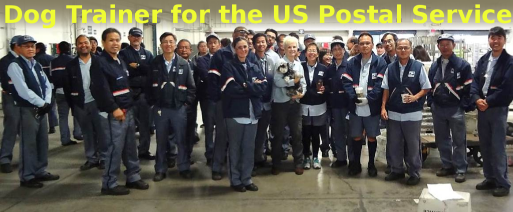 dog trainer for the us postal service