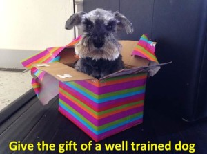 Gift certificate for dog training