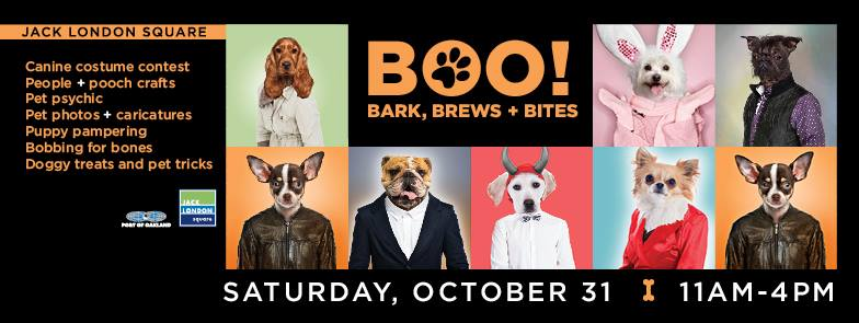 THE POOCH COAHC DOG HALLOWEEN PARTY