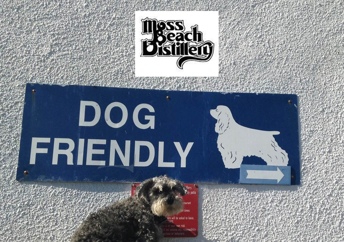 Dog friendly travel The Pooch Coach Moss Beach Distillery