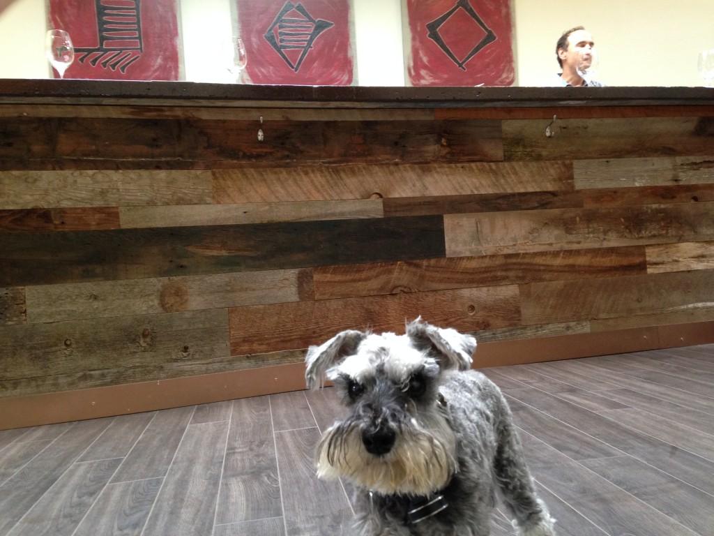 enkidu winery - dog friendly