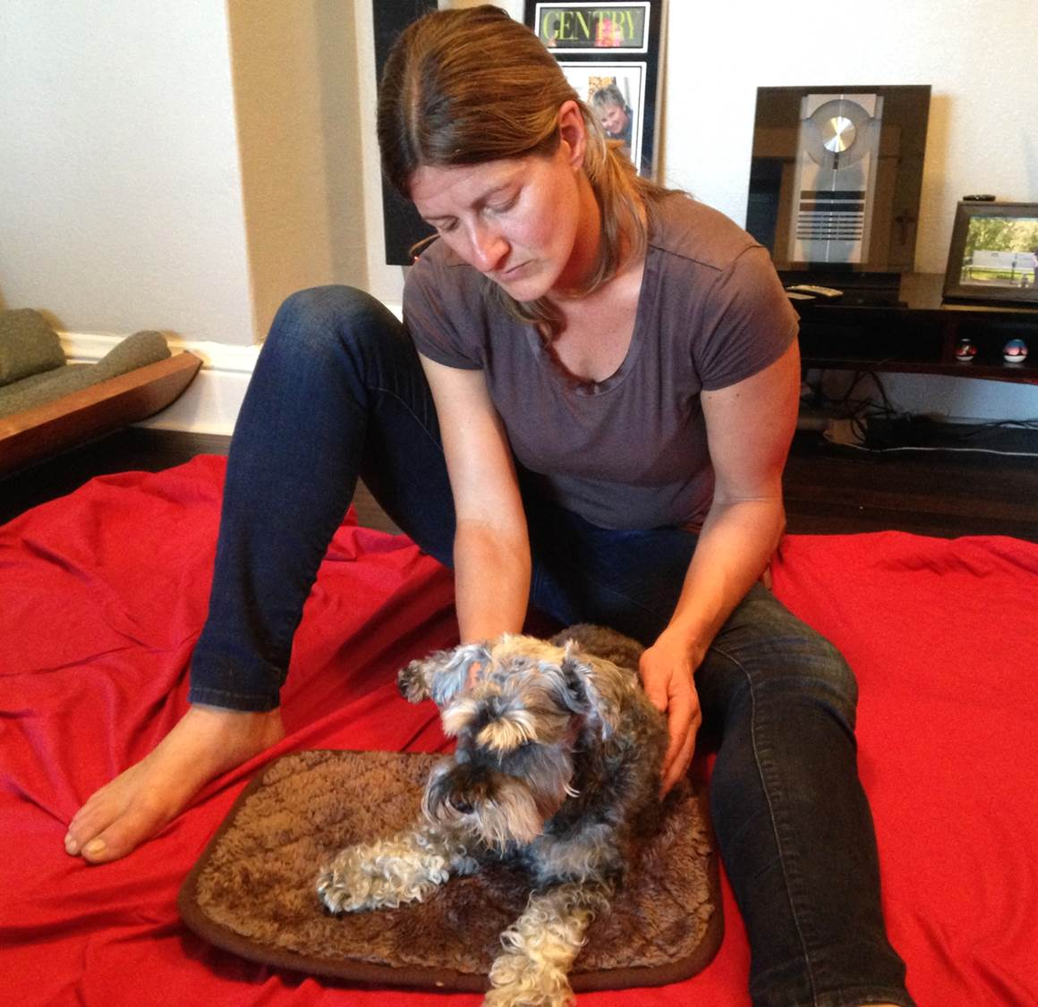 wags and wellness the pooch coach