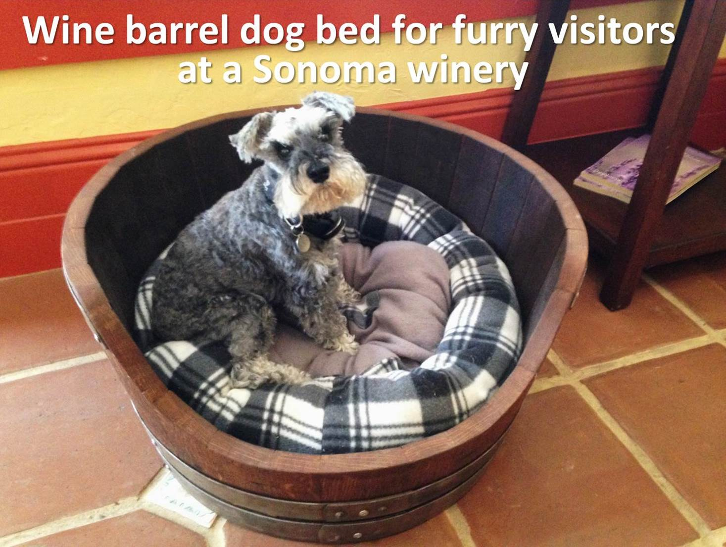 wine barrel dog bed - dog friendly travel