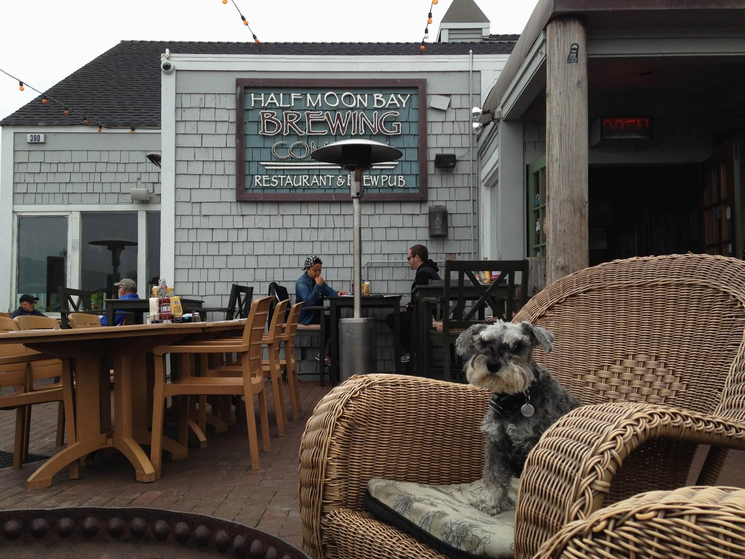 Dog Friendly travel - Half Moon Bay Brewing Co allows dogs