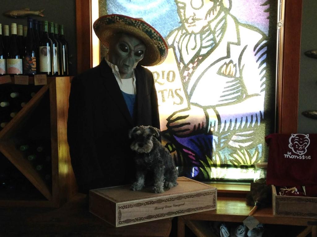 dog friendly travel - bonny doon vineyard