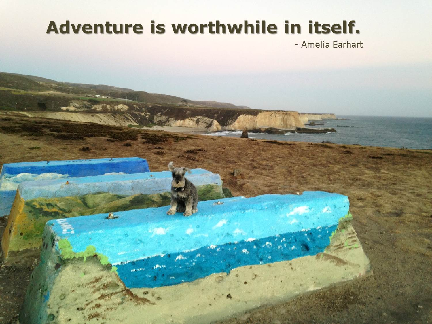 travel in your own backyard
