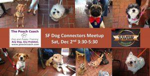sf dog connectors meetup dec 2017