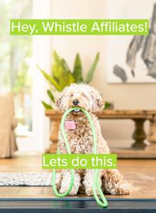 whistle pet tracker