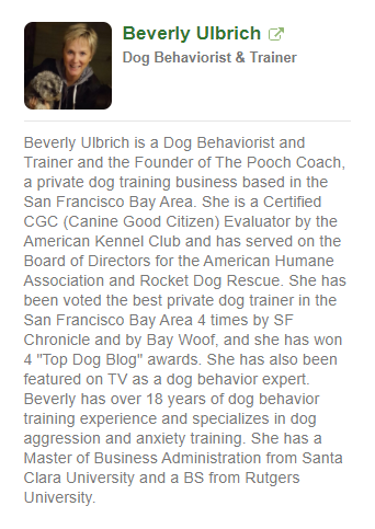 he pooch coach dog training expert in san francisco author on wikihow